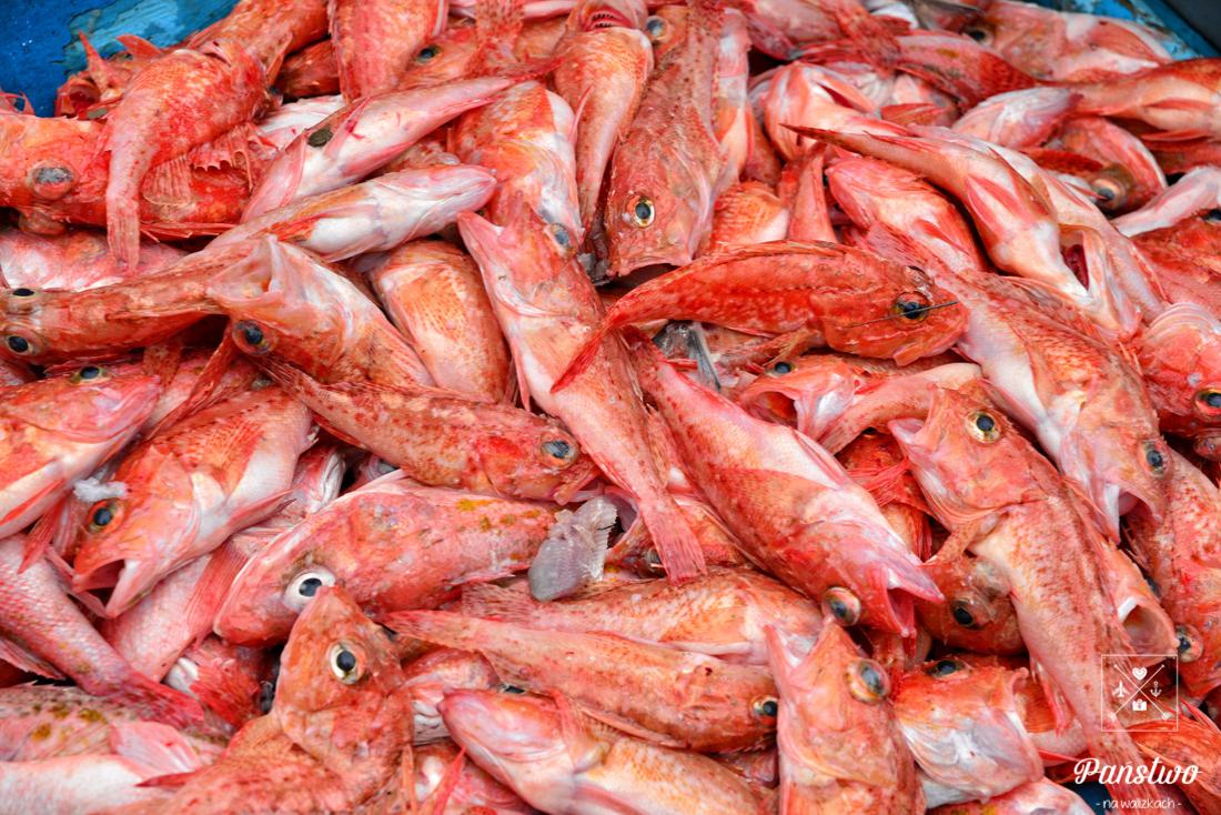 Puerto Lopez Ekwador ryby